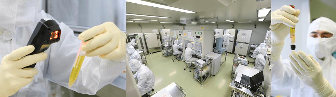 最新かつ安全性の高い環境での細胞培養