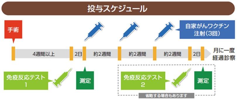自家がんワクチン投与スケジュール